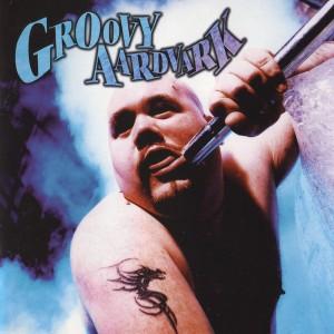 Groovy Aardvark